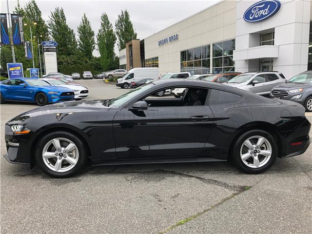 2019 Ford Mustang EcoBoost (Stk: OP19191) in Vancouver - Image 2 of 21