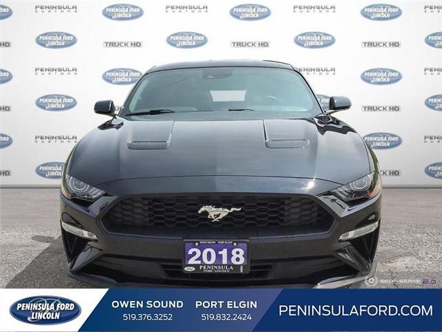 2018 Ford Mustang  (Stk: 19MU13A) in Owen Sound - Image 2 of 25