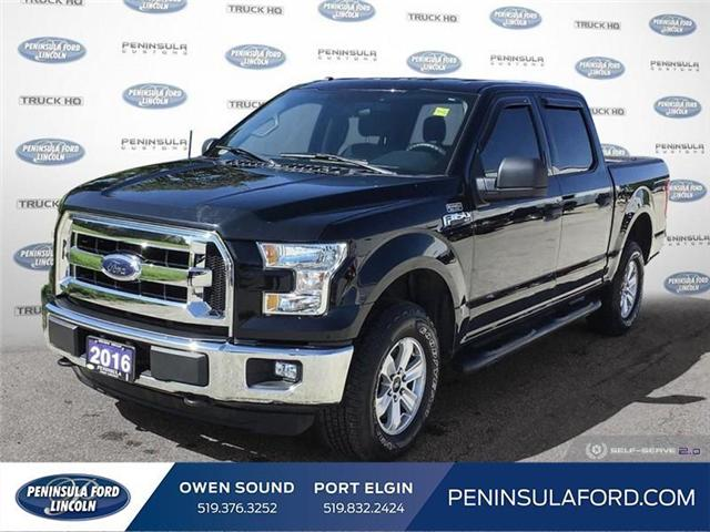 2016 Ford F-150 XLT (Stk: 19FE186A) in Owen Sound - Image 1 of 23