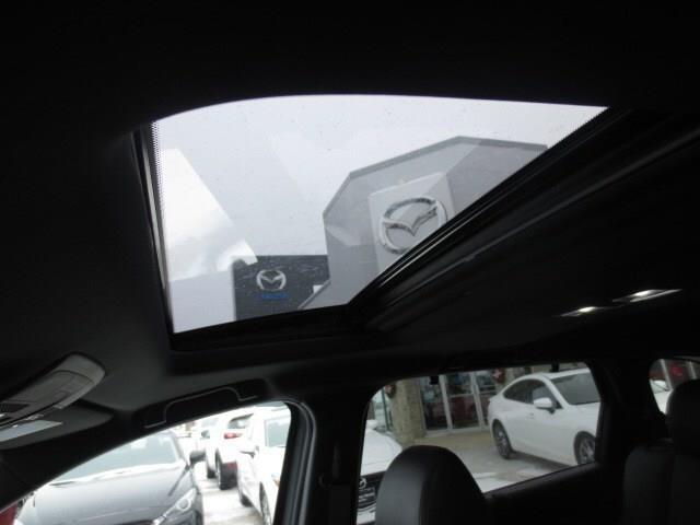 2019 Mazda CX-9 GT (Stk: M19022) in Steinbach - Image 11 of 22