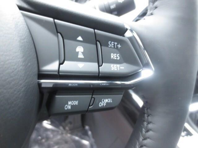 2019 Mazda CX-9 GT (Stk: M19022) in Steinbach - Image 15 of 22