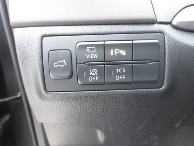 2019 Mazda CX-9 GT (Stk: M19022) in Steinbach - Image 16 of 22