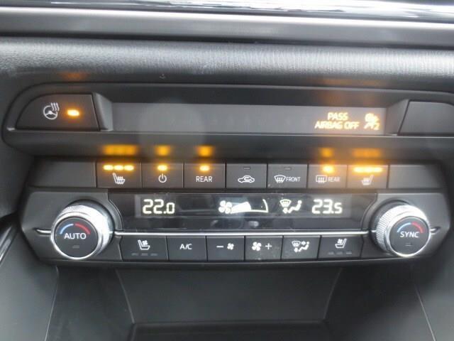 2019 Mazda CX-9 GT (Stk: M19022) in Steinbach - Image 20 of 22