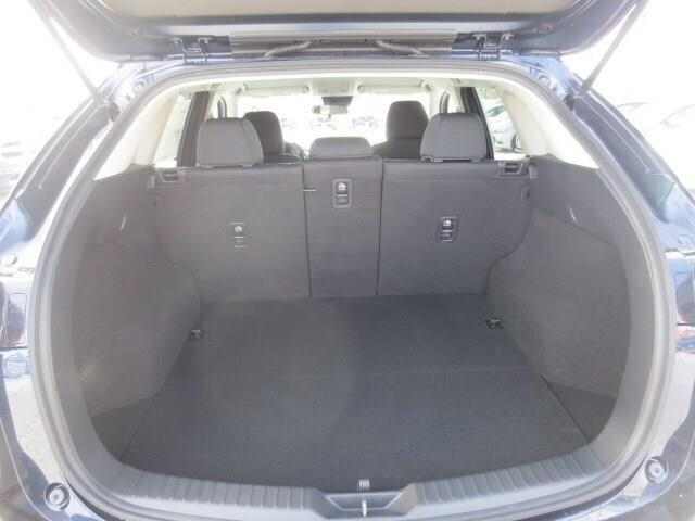 2019 Mazda CX-5 GX (Stk: M19051) in Steinbach - Image 22 of 22