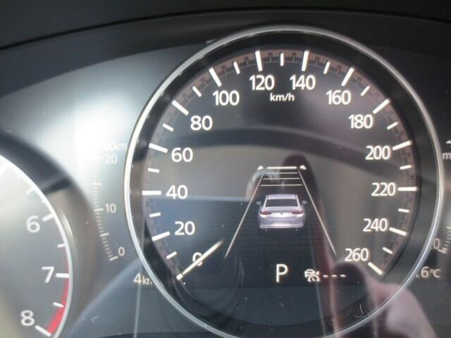 2019 Mazda Mazda3 GT (Stk: M19126) in Steinbach - Image 22 of 37