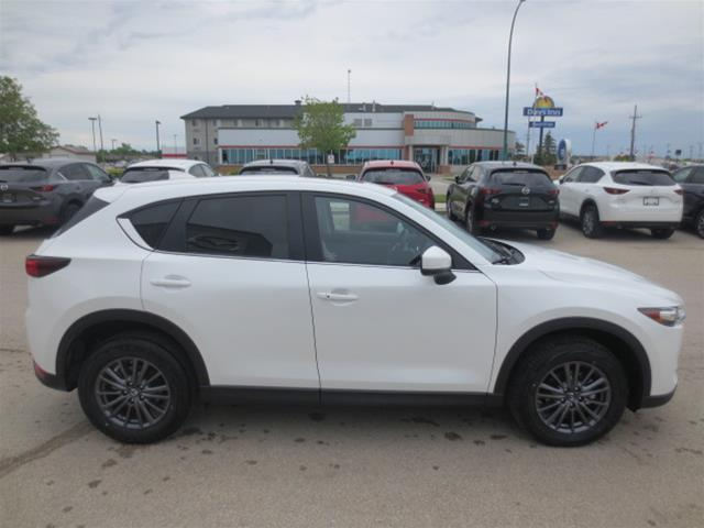 2019 Mazda CX-5 GS (Stk: M19043) in Steinbach - Image 4 of 22