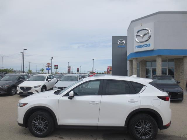 2019 Mazda CX-5 GS (Stk: M19043) in Steinbach - Image 6 of 22