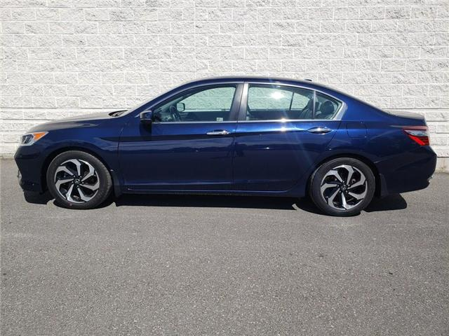 2016 Honda Accord EX-L (Stk: 19P097) in Kingston - Image 1 of 29