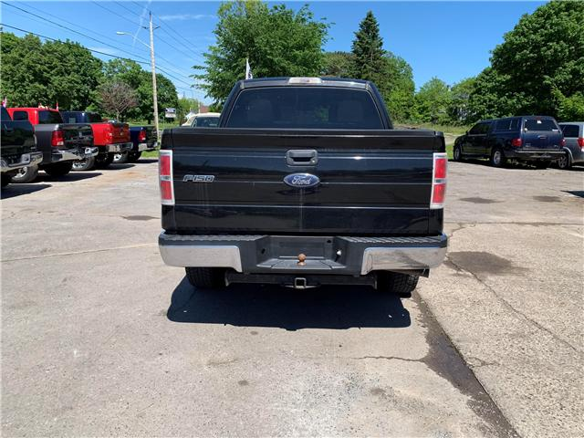 2014 Ford F-150 XLT (Stk: ) in Cobourg - Image 3 of 13