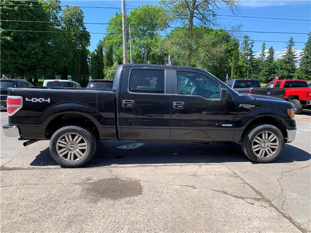 2014 Ford F-150 XLT (Stk: ) in Cobourg - Image 13 of 13