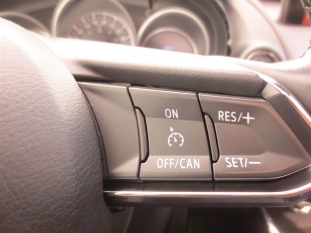 2017 Mazda CX-9 GT (Stk: A0251) in Steinbach - Image 16 of 22