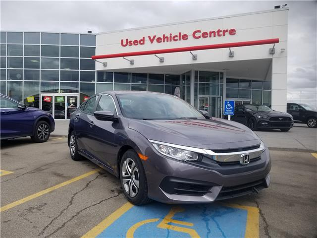 2017 Honda Civic LX (Stk: U194200) in Calgary - Image 1 of 25