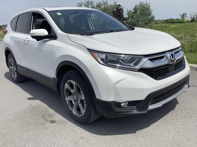 2019 Honda CR-V EX-L (Stk: 190350) in Orléans - Image 13 of 22