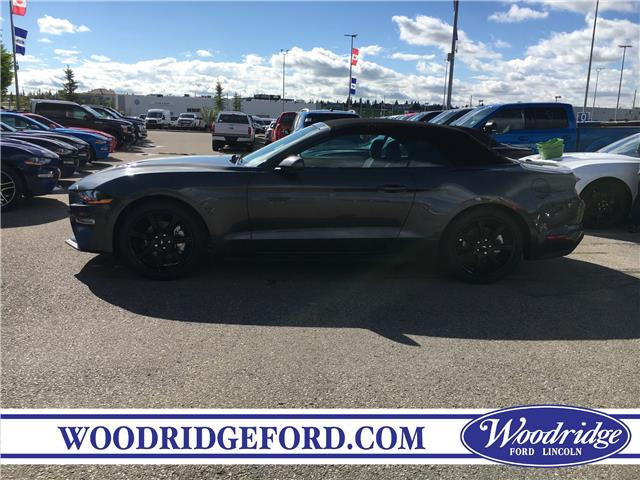 2019 Ford Mustang EcoBoost (Stk: K-1736) in Calgary - Image 2 of 5