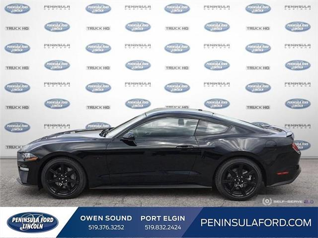 2019 Ford Mustang  (Stk: 19MU14) in Owen Sound - Image 3 of 25