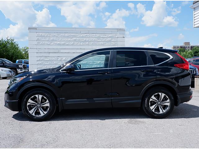 2017 Honda CR-V LX (Stk: 19516A) in Peterborough - Image 2 of 17