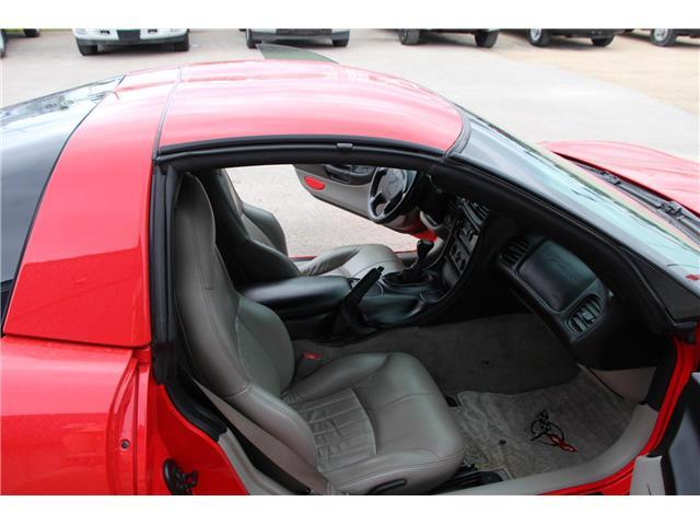 2001 Chevrolet Corvette Base (Stk: P9152) in Headingley - Image 12 of 16