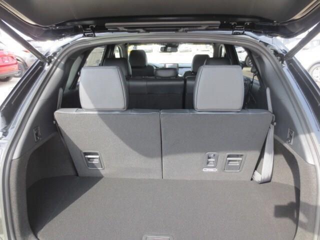 2019 Mazda CX-9 GT (Stk: M19108) in Steinbach - Image 11 of 41