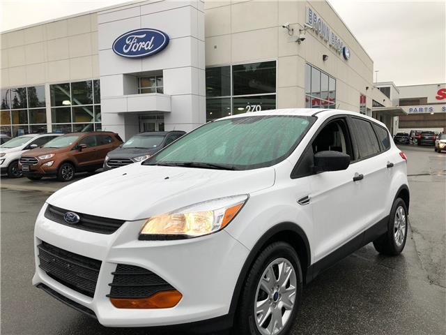 2015 Ford Escape S (Stk: LP19223) in Vancouver - Image 1 of 21