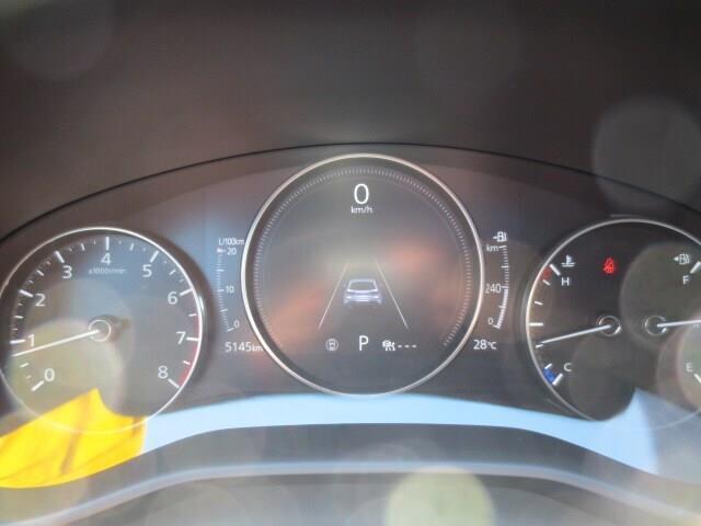 2019 Mazda Mazda3 Sport GT (Stk: A0254) in Steinbach - Image 19 of 28