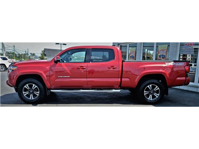 2016 Toyota Tacoma SR5 (Stk: N19331A) in Timmins - Image 9 of 14