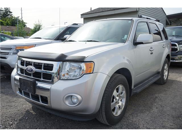 2011 Ford Escape Limited (Stk: 19286) in Ottawa - Image 1 of 1