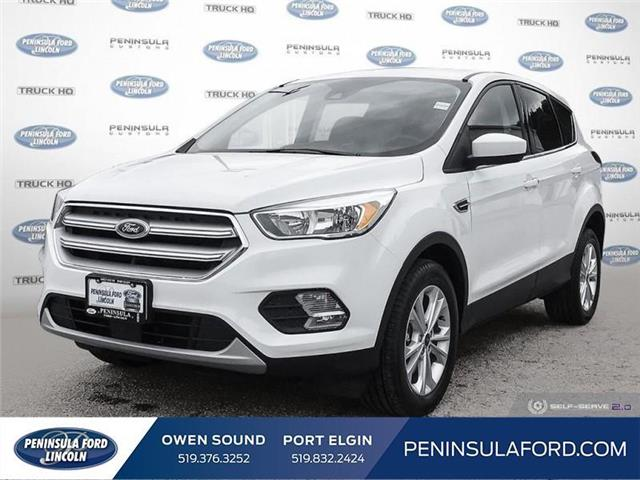 2019 Ford Escape SE (Stk: 19ES85) in Owen Sound - Image 1 of 24