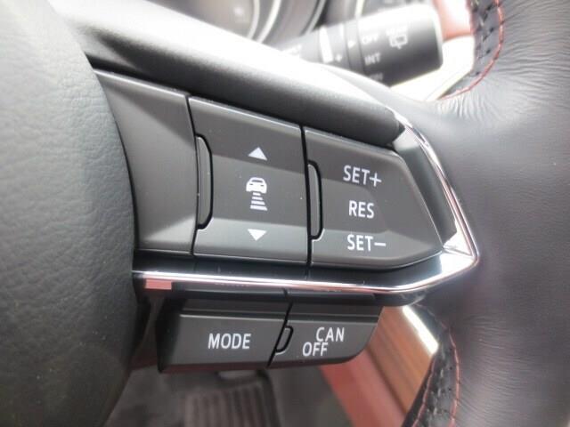 2018 Mazda CX-9 Signature (Stk: A0255) in Steinbach - Image 27 of 42