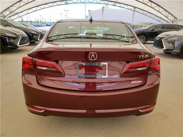 2015 Acura TLX Tech (Stk: L19234B) in Calgary - Image 6 of 23