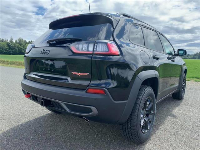 2019 Jeep Cherokee Trailhawk (Stk: D468069) in Courtenay - Image 6 of 29