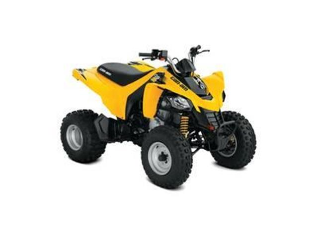 New 2018 Can-Am DS 250®   - YORKTON - FFUN Motorsports Yorkton