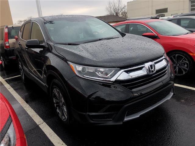 2019 Honda CR-V LX (Stk: N5121) in Niagara Falls - Image 4 of 5