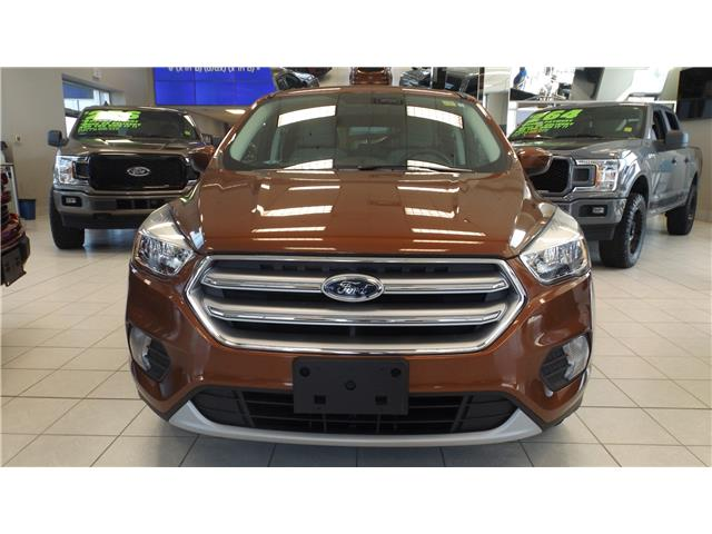 2017 Ford Escape SE (Stk: 19-7011) in Kanata - Image 2 of 13