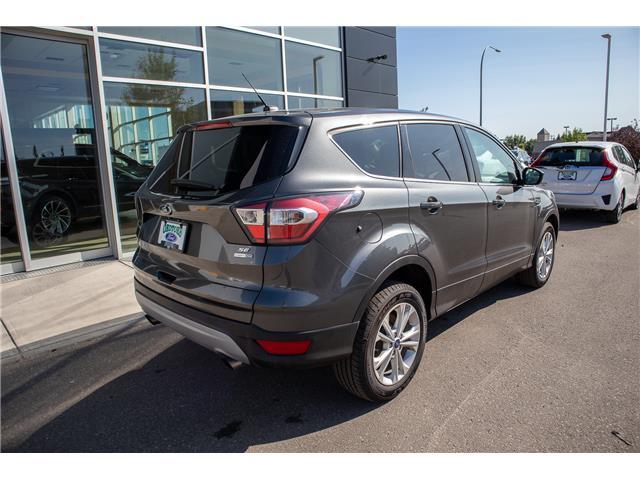 2017 Ford Escape SE (Stk: B81460) in Okotoks - Image 5 of 22