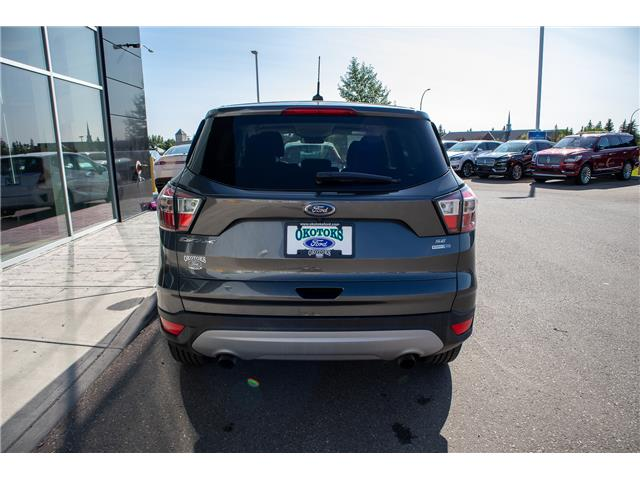 2017 Ford Escape SE (Stk: B81460) in Okotoks - Image 6 of 22