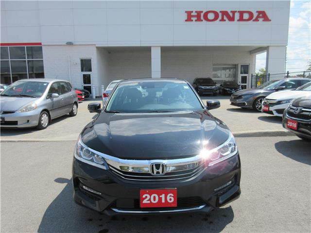 2016 Honda Accord EX-L (Stk: 26802L) in Ottawa - Image 2 of 17