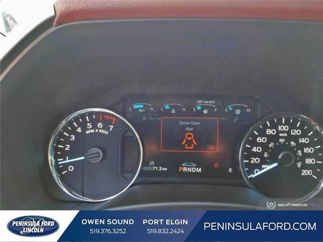 2019 Ford F-150 Platinum (Stk: 19FE151) in Owen Sound - Image 13 of 24