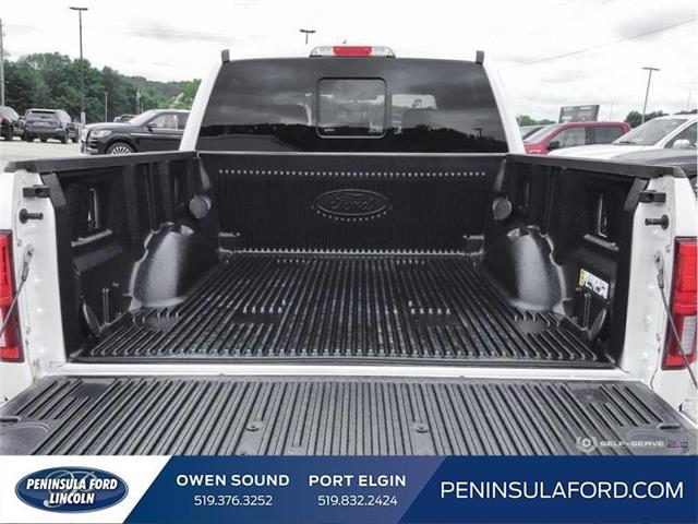 2019 Ford F-150 Limited (Stk: 19FE215) in Owen Sound - Image 11 of 24