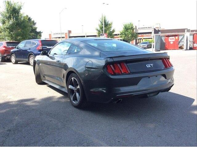 2017 Ford Mustang  (Stk: 19-0784A) in Ottawa - Image 4 of 18