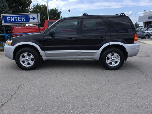 2007 Ford Escape XLT (Stk: K169B) in Grimsby - Image 6 of 15