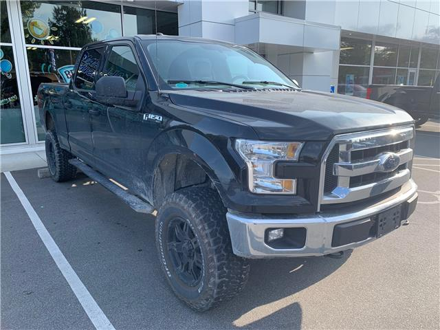2016 Ford F-150 XLT (Stk: 9F19248A) in Vancouver - Image 1 of 1