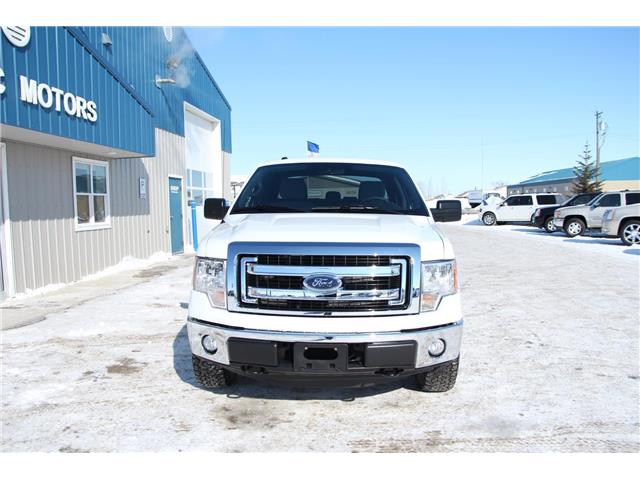 2014 Ford F-150  (Stk: P9031) in Headingley - Image 3 of 17
