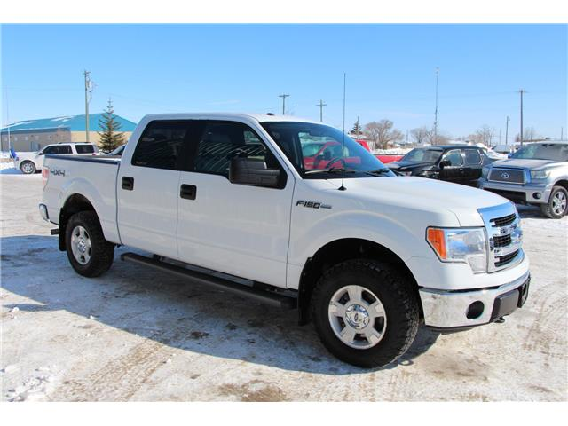 2014 Ford F-150  (Stk: P9031) in Headingley - Image 4 of 17