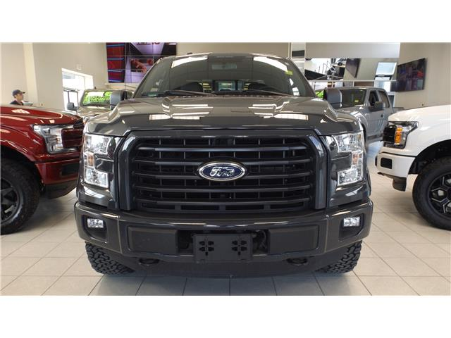 2016 Ford F-150 XLT (Stk: P48650) in Kanata - Image 2 of 16