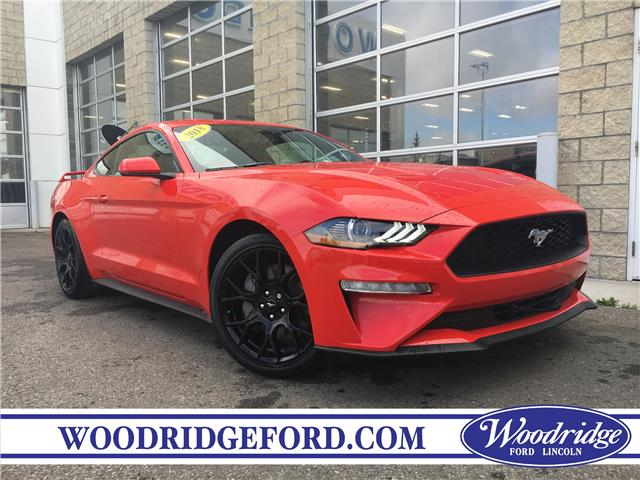 2018 Ford Mustang EcoBoost (Stk: JK-366A) in Calgary - Image 1 of 20