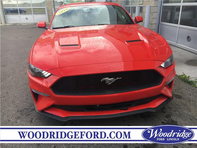 2018 Ford Mustang EcoBoost (Stk: JK-366A) in Calgary - Image 4 of 20