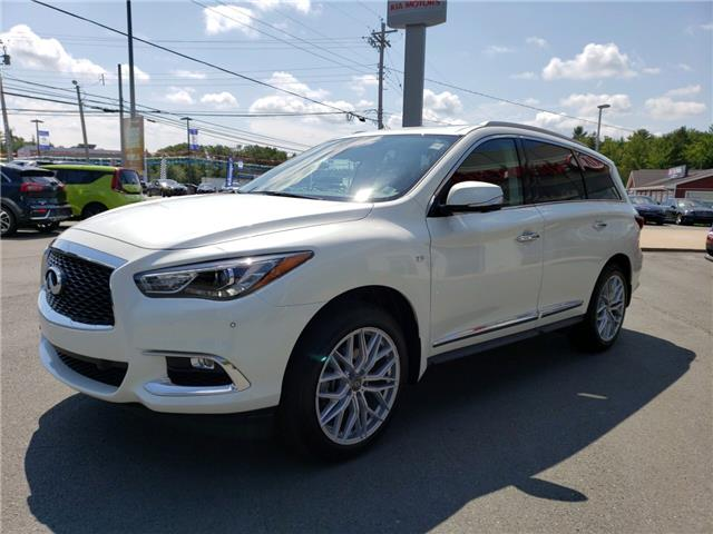 2019 Infiniti QX60 Pure (Stk: 20050A) in Hebbville - Image 3 of 30