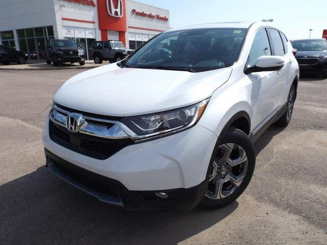 2019 Honda CR-V EX-L (Stk: 19265) in Pembroke - Image 1 of 30
