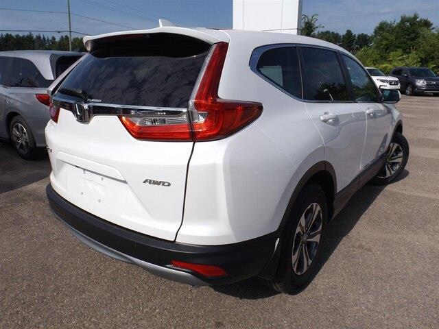 2019 Honda CR-V LX (Stk: 19242) in Pembroke - Image 10 of 28