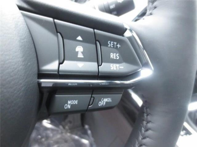 2019 Mazda CX-9 GT AWD (Stk: M19022) in Steinbach - Image 15 of 22